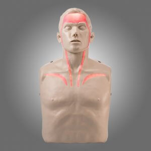Brayden CPR Manikin (LED red blood circulation)